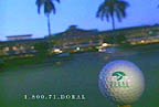 The Doral Open