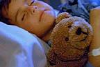 A Bear Named Fred - JMH Health Plan